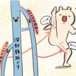 大伏在静脈と小伏在静脈が下肢静脈瘤になりやすい静脈です(by大宮セントラルクリニック)